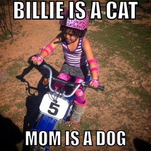 Billie is a cat